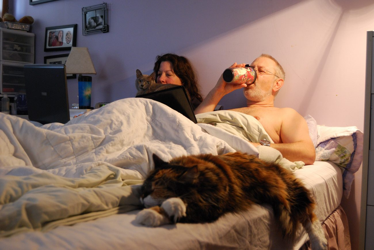 Cats, coffee and laptops in bed by Gary Allman
