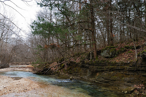 Camp Creek in Busiek State Park and Wildlife area