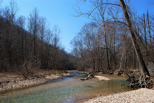 Woods Fork, Busiek State Park and Wildlife Area
