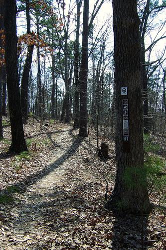 Berryman Trail