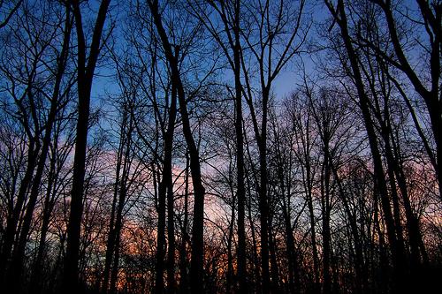 Sundown at Little Brazil Creek, Missouri