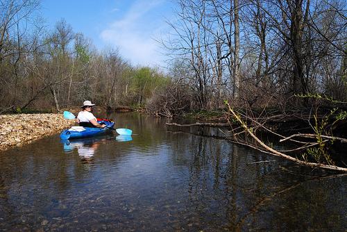 Exploring a creek at Fellows Lake