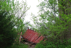 The old barn on the Sac River trail had collapsed