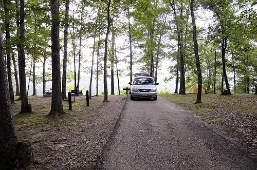 Pines Overlook, Red Bluff Campsite, Missouri