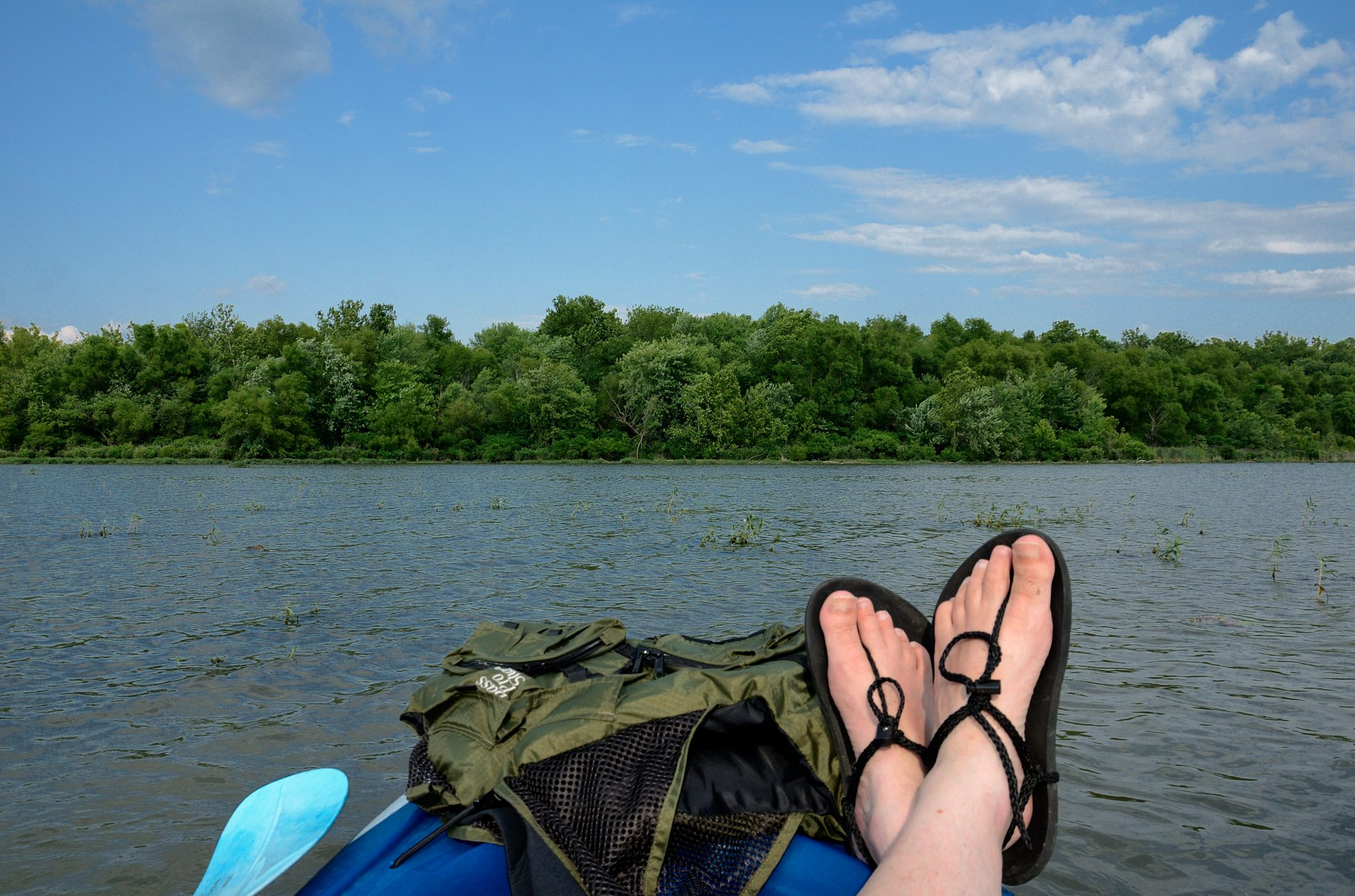 Taking a rest on lake Springfield