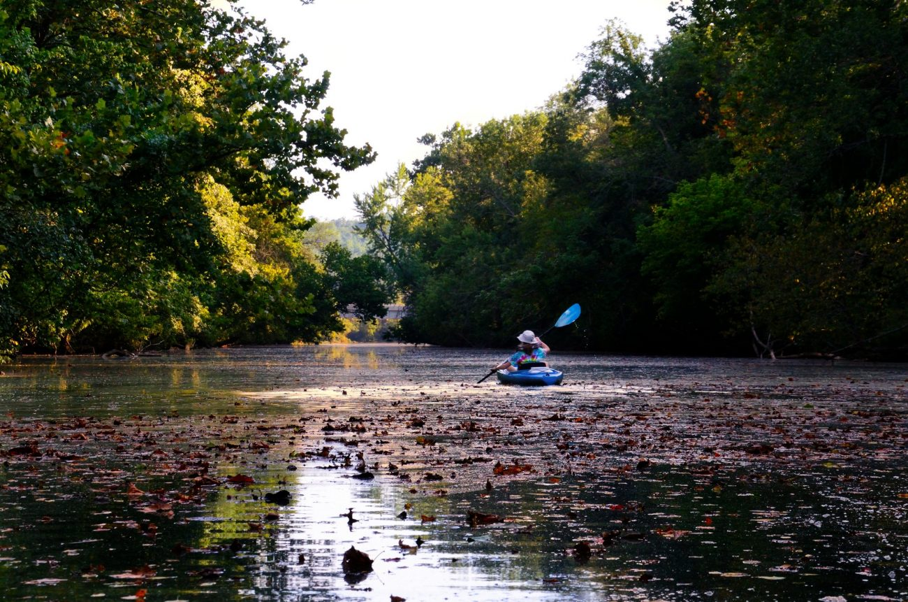 Kayak on the James River covered in fall leaves, Springfield Missouri.