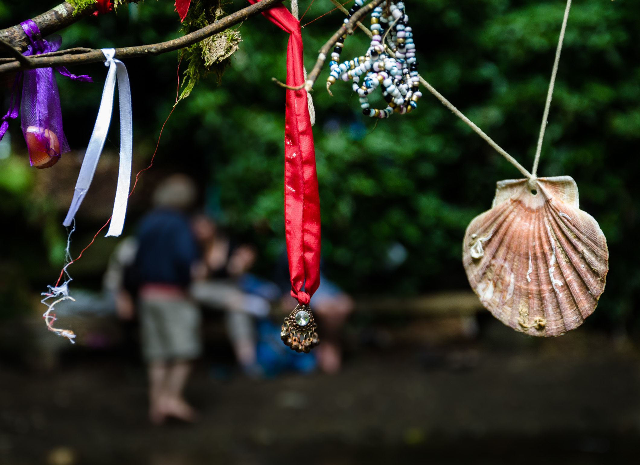 Charms hanging on a bush at St. Nectan's Glen