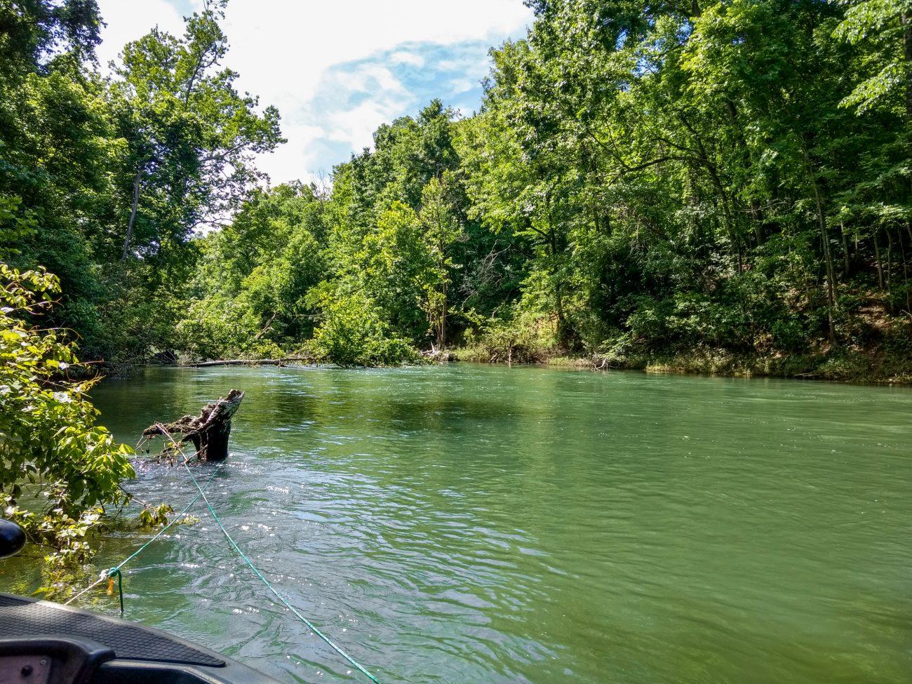Backwater on Lake Taneycomo, Missouri