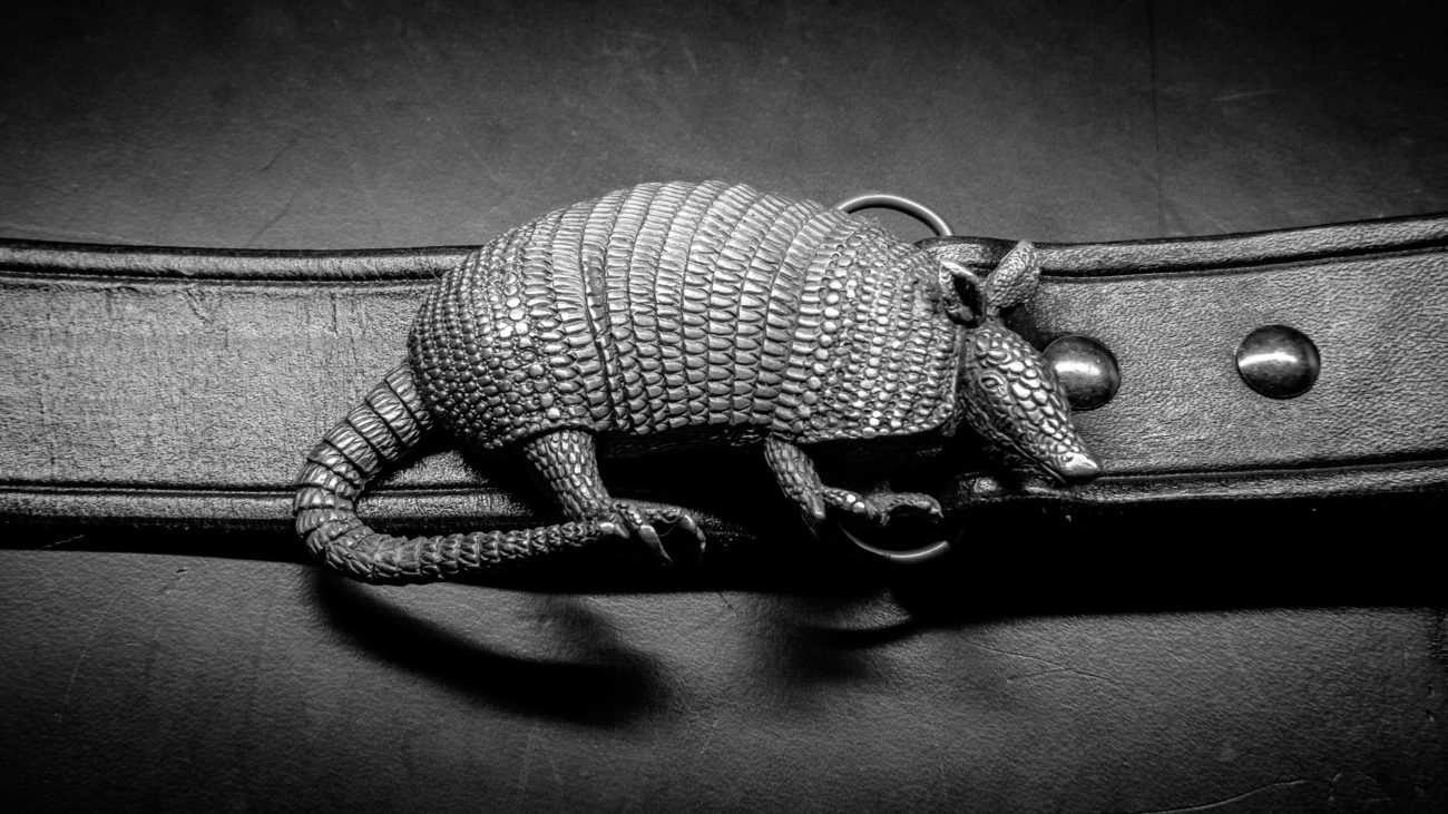 Photograph of an armadillo Belt Buckle