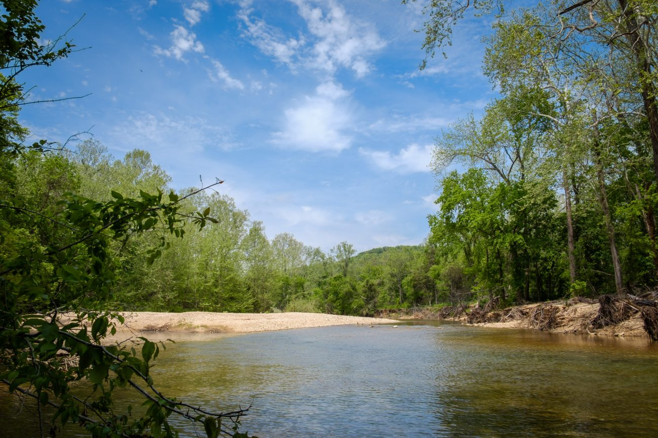 Photograph of Woods Fork at Busiek State Forest and Wildlife Area, Missouri
