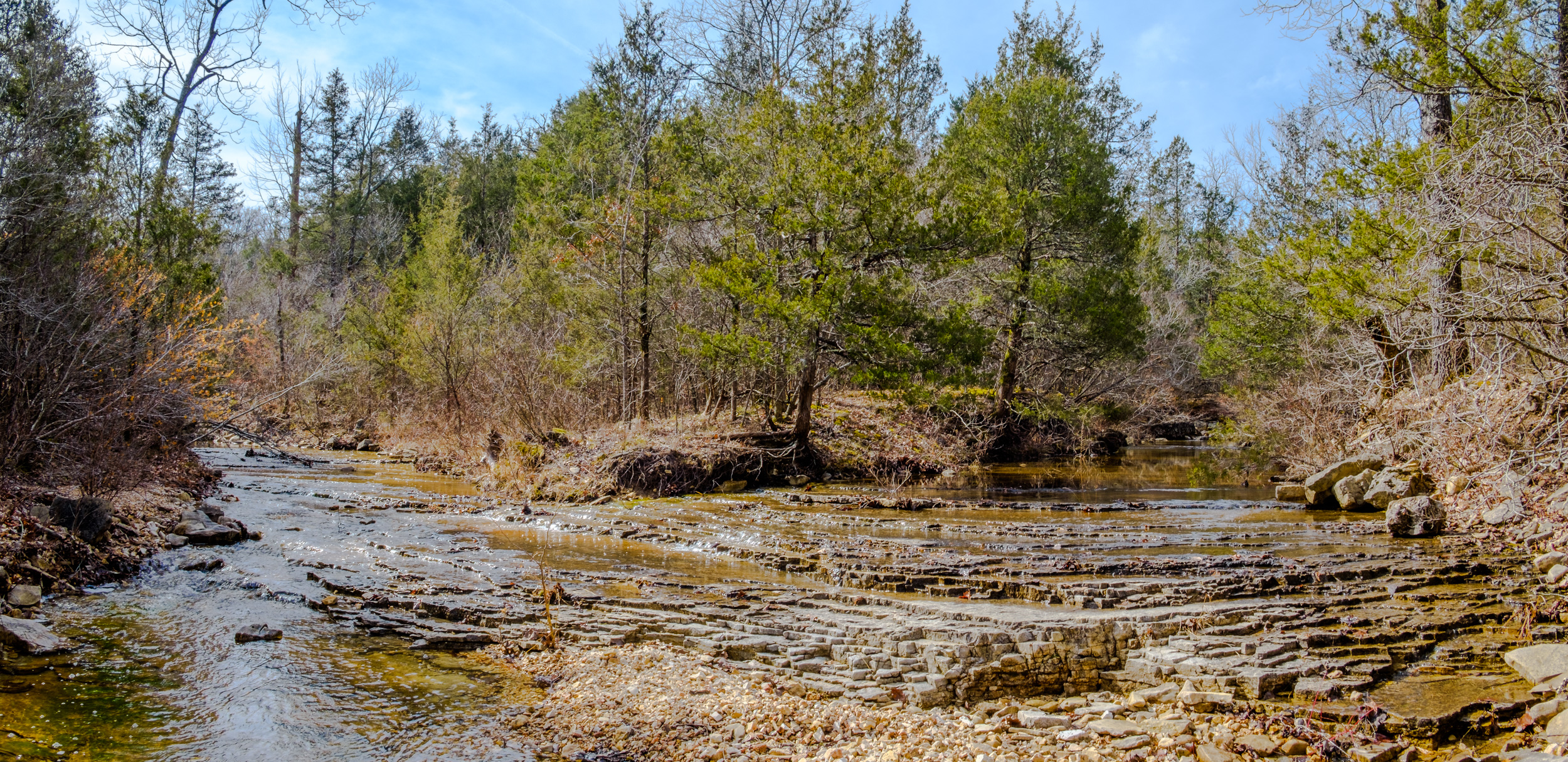 The confluence of Brushy Creek and 'Cab Creek'. on the Pees Hollow Trail at Hercules Glades Wilderness.