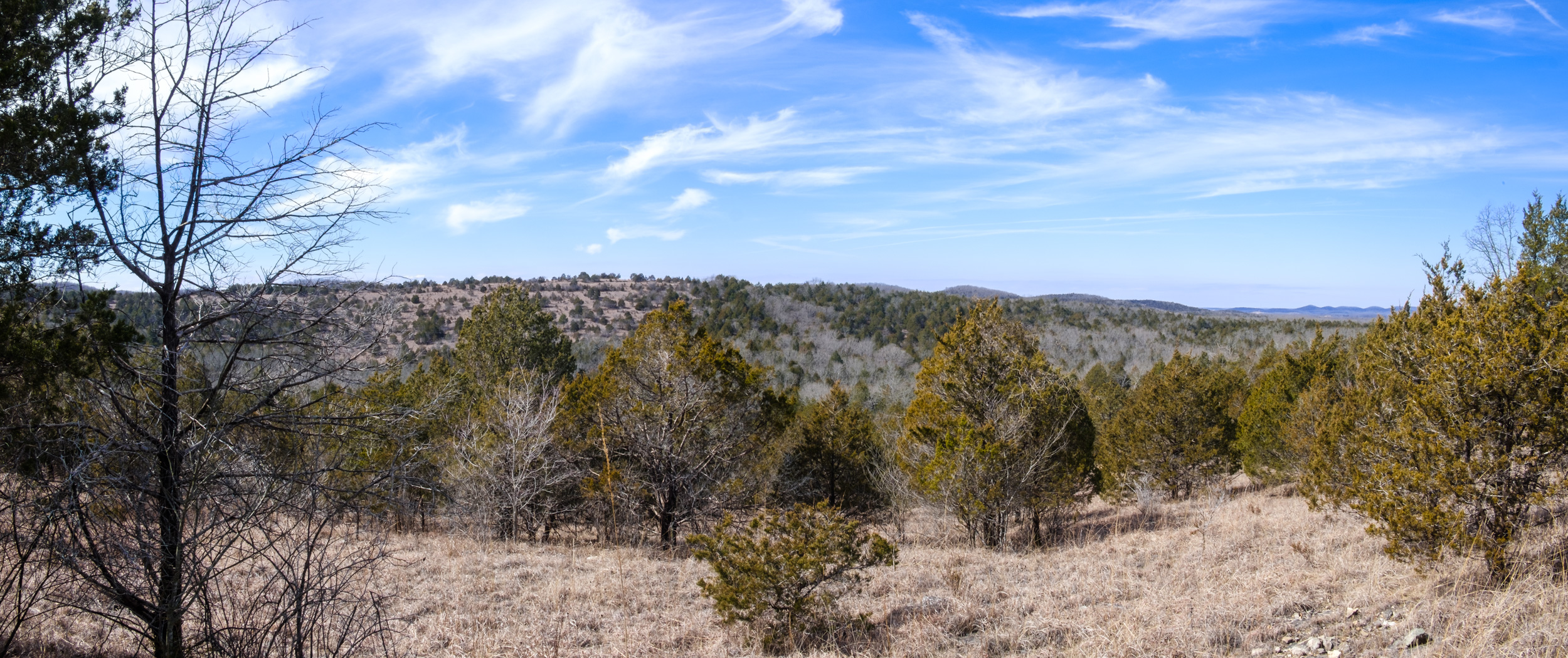 View to the northwest from the eastern side of the Pees Hollow Trail at Hercules Glades Wilderness.