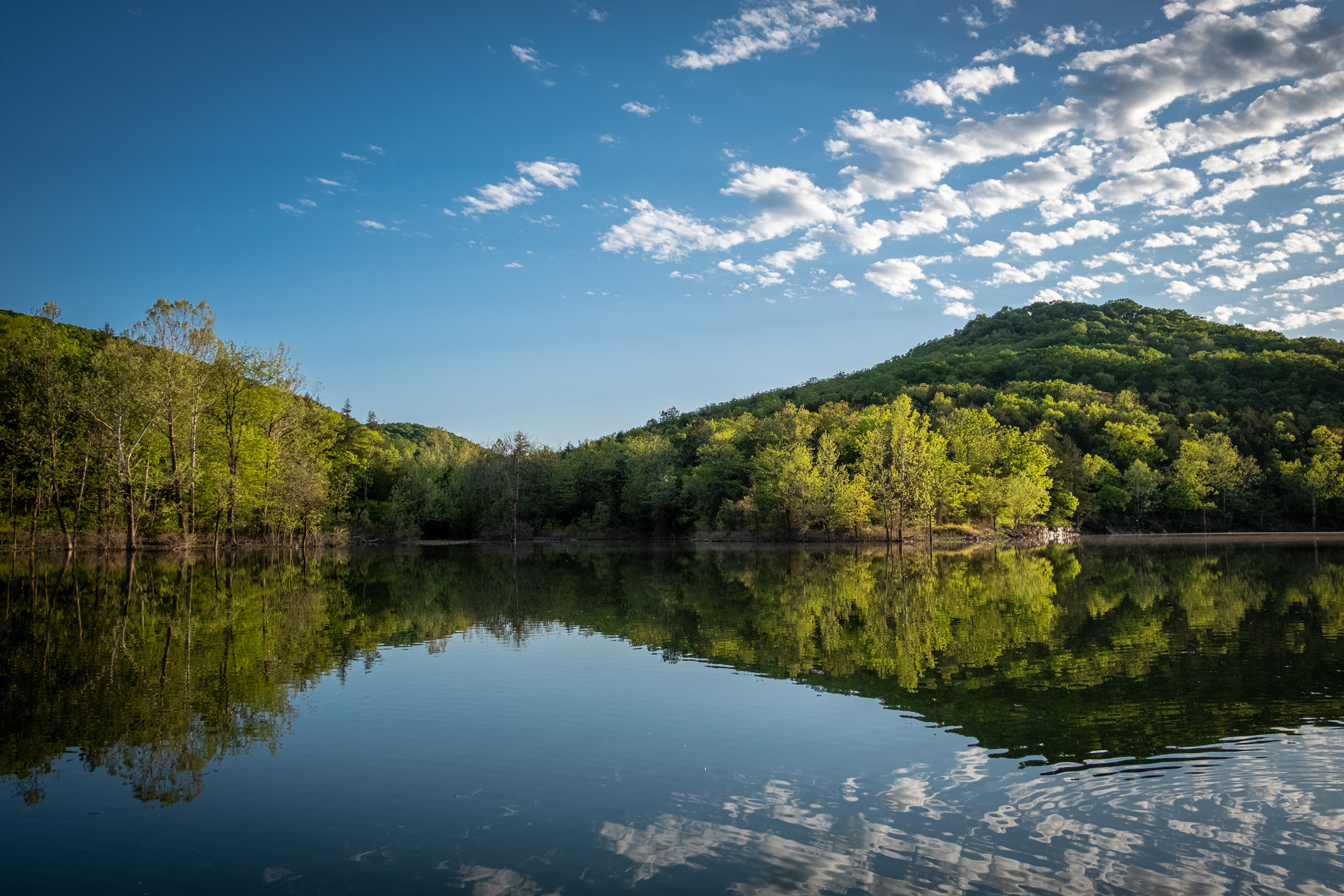 Photograph of Table Rock Lake at Piney Creek Wilderness. Mark Twain National Forest. Spring 2020.