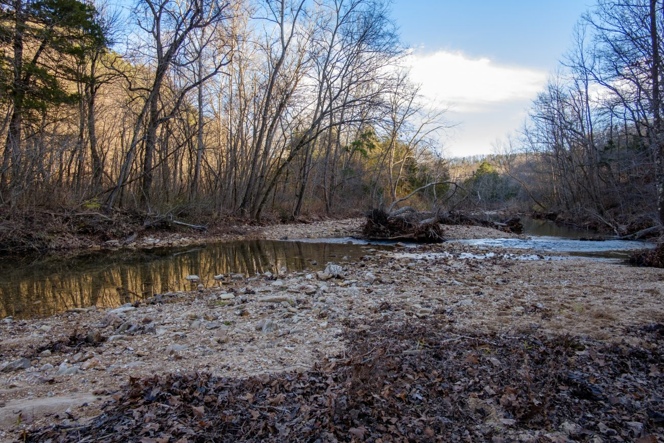 Photograph taken in the late fall of 2020 where the Big Piney Trail crosses Paddy Creek, Paddy Creek Wilderness.